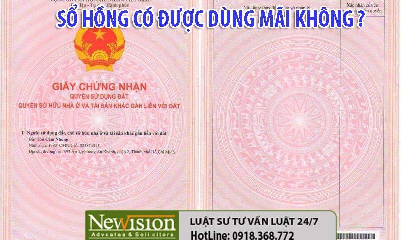 so-hong-co-duoc-dung-mai-mai-hay-khong