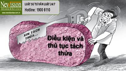 dieu-kien-va-thu-tuc-tach-thua