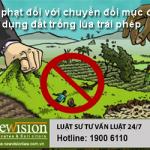 Mức xử phạt đối với hành vi chuyển đổi mục đích sử dụng đất trồng lúa trái phép