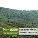 Xử lý đối với trường hợp tự ý chuyển đổi mục đích sử dụng đất rừng