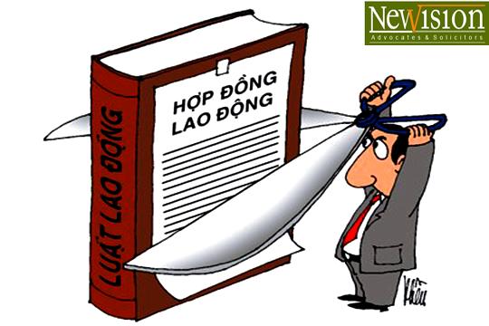 hop-dong-lao-dong-chuan-phap-luat
