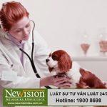 Quy trình, thủ tục đăng ký nhãn hiệu cho dịch vụ thú y